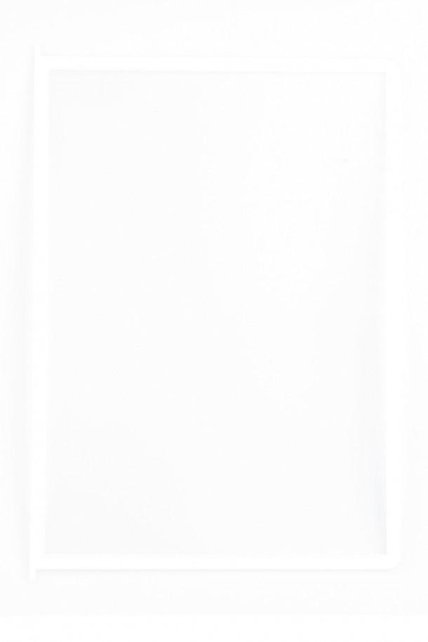 Hvide lommer